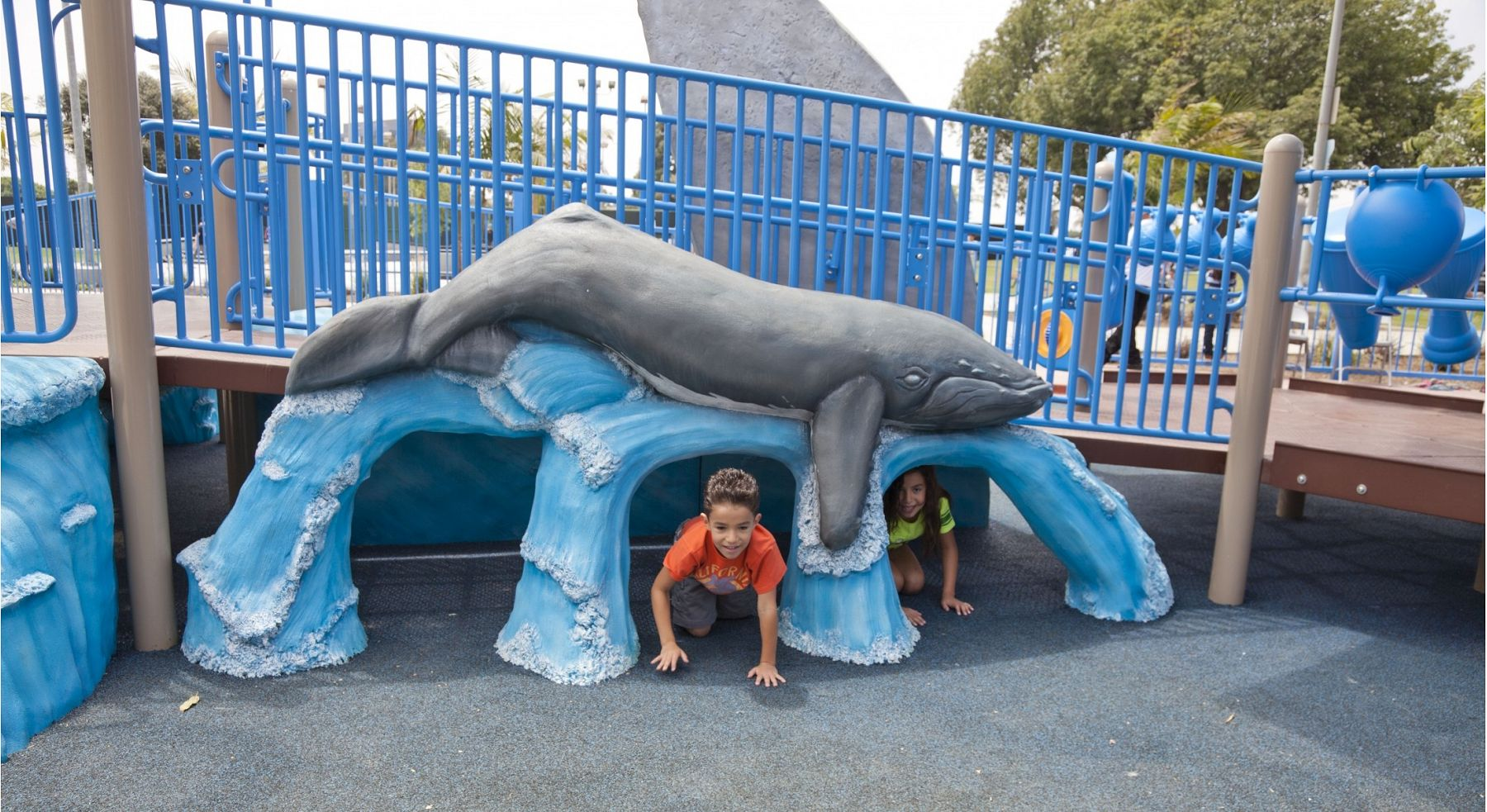 Westchester Whale