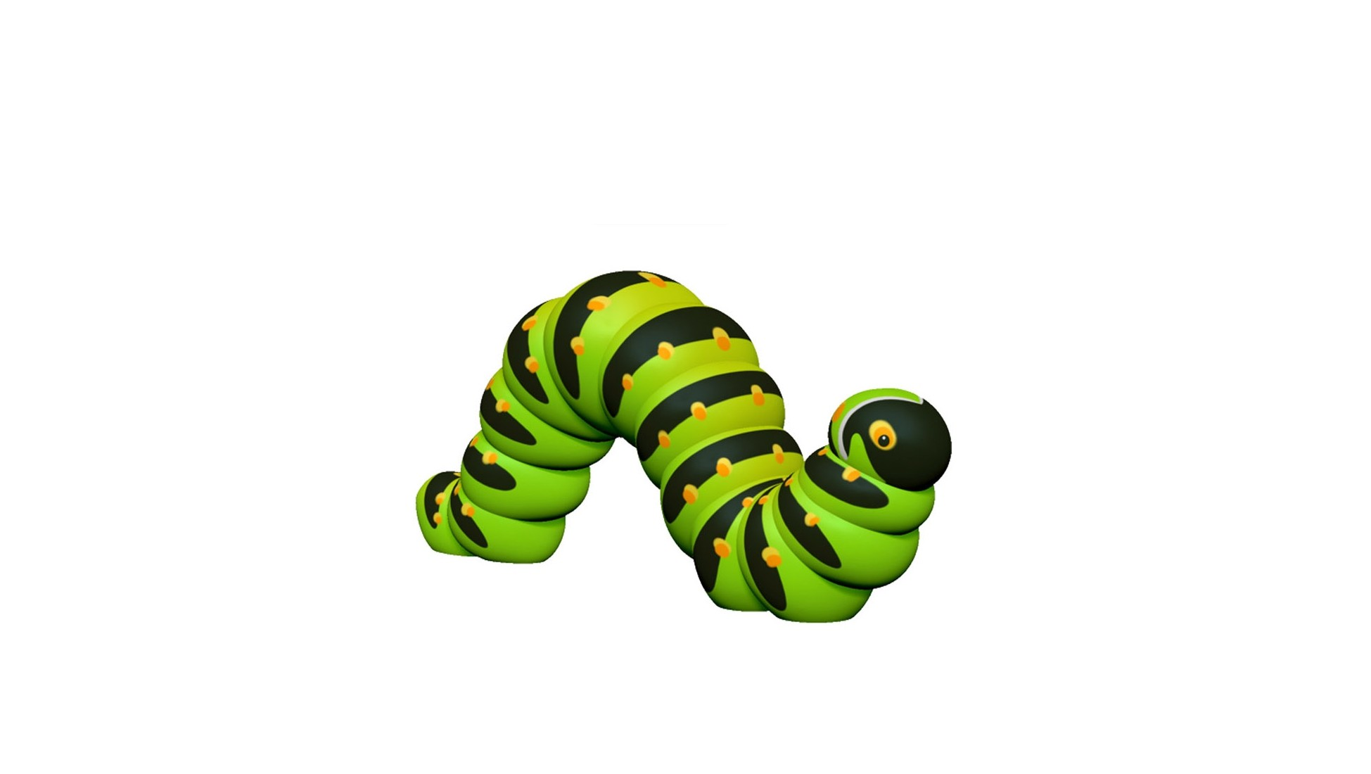 Inchworm