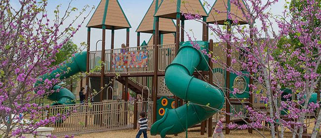 Play Structures - Commercial Grade Playground Equipment