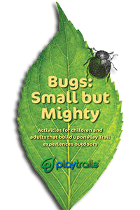 Bugs Activity Guide