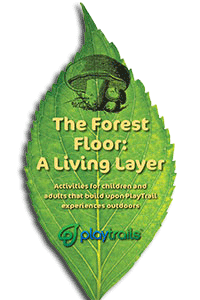 Forest Floor Activity Guide