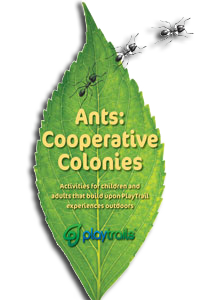Ants Activity Guide