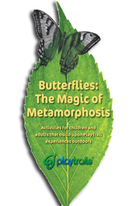 Butterflies Activity Guide