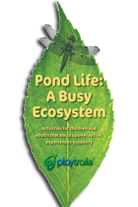 Pond Life Activity Guide